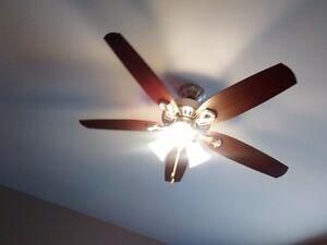 Hunter Ceiling Fan & Light