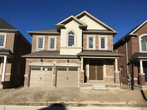 Brand NEW 4Bed House for Rent (Wanless/Chinguacousy Rd)