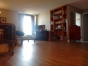 Spacious 1 Bedroom Apartment Available for Fall Sublet!