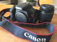Canon T3i_Mint and Perfect