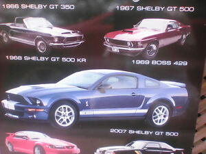 Ford Mustang Evolution Wood Picture
