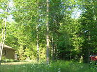 LOT FOR SALE - BUILD YOUR DREAM HOME IN WASAGA BEACH