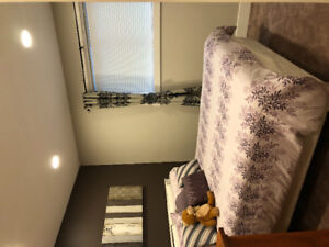 Brand new 1 bedroom suite for rent