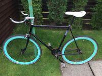 Raleigh custom fixed wheel bike