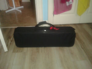 Professional Level 3/4 Violin with Black Case and Two Bows