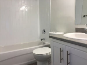 Newly Renovated Apartments for Rent in Hamilton