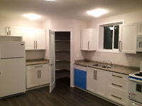 1 bedroom legal basement suite (still available)
