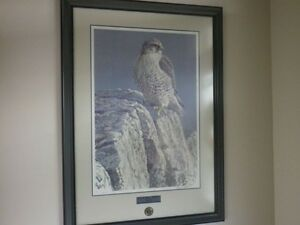**Robert Bateman's Mountain Monarch** ..framed professionally..