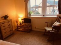 Lovely double room with ensuite in nice house Glastonbury £400/month