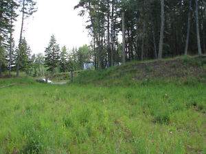 Build your dream home in one of Williams Lakes finest locations Williams Lake Cariboo Area image 5