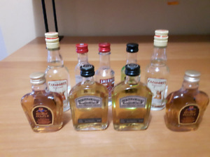 Collection of Mini Whiskey Bottle....Cool for Man Cave