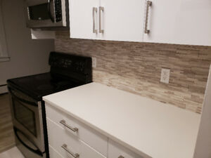 Fully Renovated 2 Bedroom Condo + Parking + Storage in LOLO