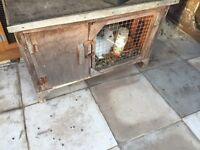 Small rabbit hutch £20