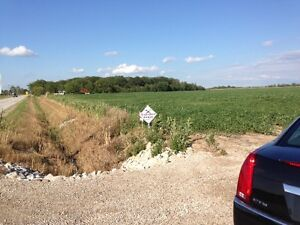48.75 Acres near Essex- Call Mike Brogan at Buckingham Realty