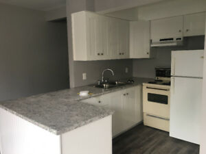 362 Division St. Unit 1 –Renovated 1 Bdrm Apt. Downtown Kingston