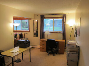 Apartment close to UofA and Whyte Ave