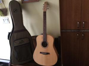 Guitare Seagull
