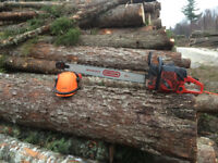 Experience chainsaw operator