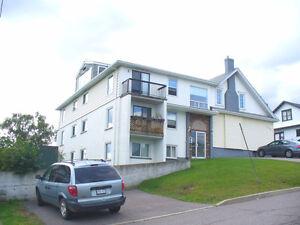Modern North side apartment