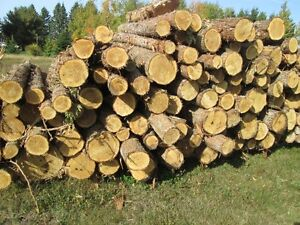 whante-log-cedar-and-log-hardwood-for-my-mill