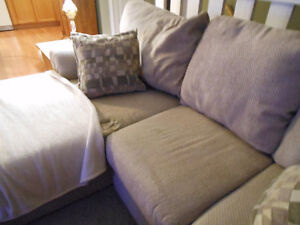 very used couch with chaise
