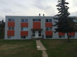 apartment for rent Regina Regina Area image 2