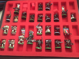 Warhammer 40K Space Marines Army (Professionally painted)