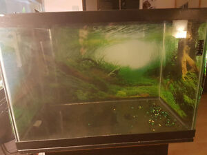 Two Small Aquariums prices in description