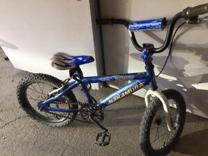 kids Bike/17-18 inch
