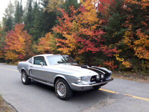 shelby gt500 1967 clone
