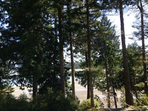 Camping on Quadra island