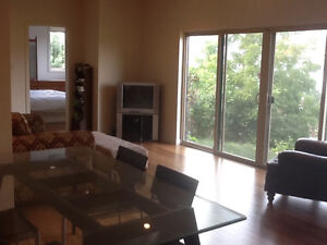 BEAUTIFUL MODERN LAKE-VIEW SUITE 1 BEDROOM AND DEN