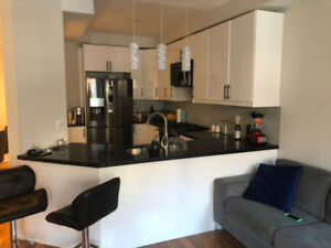 Beautiful Modern townhouse for rent in Richmond hill