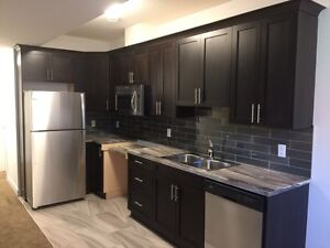 Brand new basement for rent