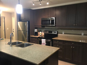 Modern 1 Bedroom - Lease Takeover London Ontario image 2