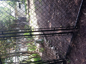 Chain link fencing Kitchener / Waterloo Kitchener Area image 2