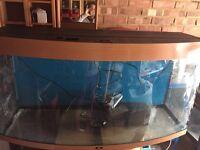 Juwel Vision 260 Aquarium Fish Tank with Filter And Heater