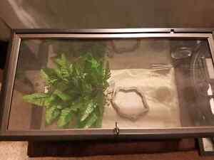 Small Reptile Tank Cambridge Kitchener Area image 2