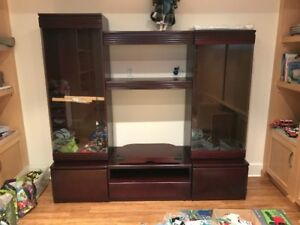 Glass/Wood Wall Unit with TV Stand
