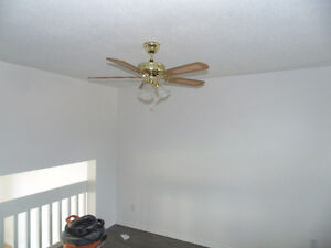 Painting, Stucco Repairs, House Painters Cambridge Kitchener Area image 8