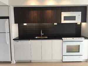 One Bedroom Condo (Spadina & Fort York Blvd)