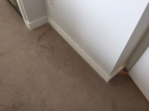 OFFERING Trims baseboards casing any design or size is available