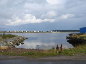 Land for Sale in Catalina with water vew St. John's Newfoundland image 3
