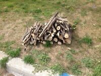 Free roadside small pile of wood for burning