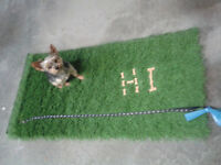 """Artificial Grass"" 2 ft X 4 ft ~~~DOGGY ~ DO ~ PAD~~~"