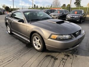 2004 Ford Mustang V6 Coupe 40th Anniversary Edition