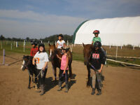 Sept 5, 6 +7: Horse riding 10am - noon IN SE London