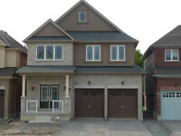 Gorgeous Brand New Three Bedroom Home