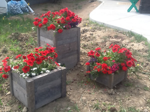 Flower boxes - set of 3