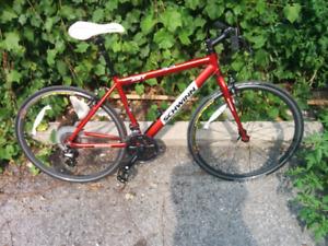 Light hybrid bike